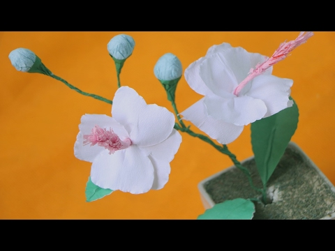 How to Make Hibiscus Tissue Paper Flowers for Beginners Tutorial