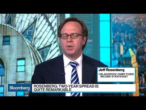 Italy Faces a Potential Exit Referendum, Says BlackRock's Rosenberg