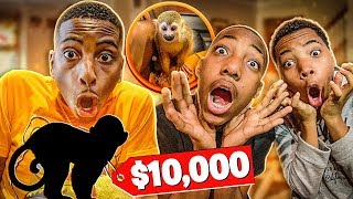 I SURPRISED MY FAMILY WITH A PET MONKEY!