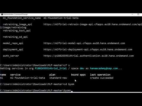 Leonardo ML Foundation: BYOM - Inference App