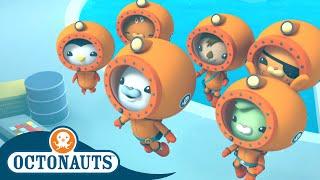 Octonauts - Team Ocean Research | Cartoons for Kids | Underwater Sea Education