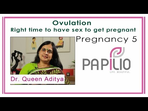 Ovulation:  Right time to get pregnant - Pregnancy 5