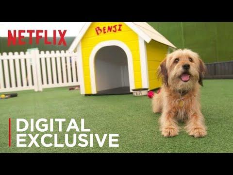 BENJI    Los Angeles Premiere   Netflix