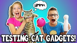 TESTING CAT GADGETS ON OUR CAT!!!
