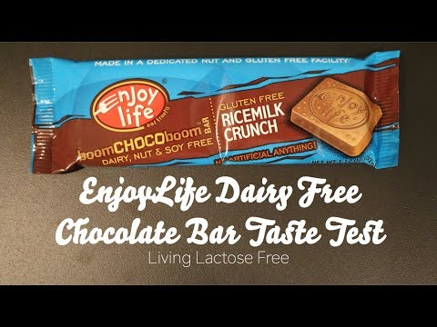 EnjoyLife Dairy Free Chocolate Bar Taste Test, RiceMilk Crunch