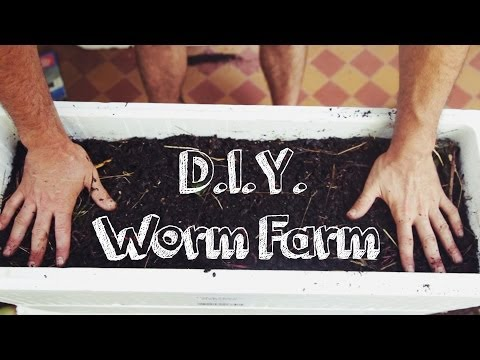 DIY Worm Farm
