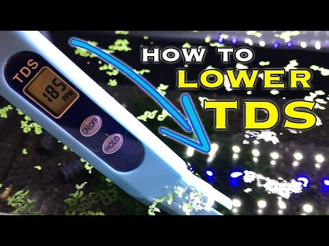 How to Lower TDS in an Aquarium