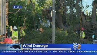 Thousands Still Without Power After LA Pummeled By Wind