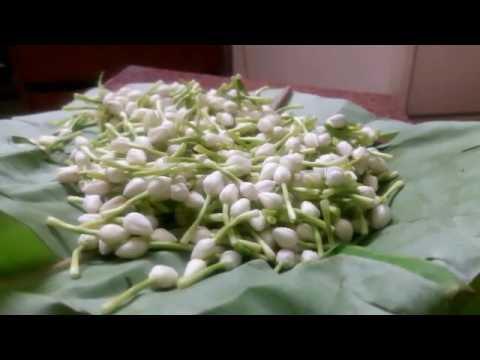 How To Make Natural Flower Jewellery For Dohale Jevan.