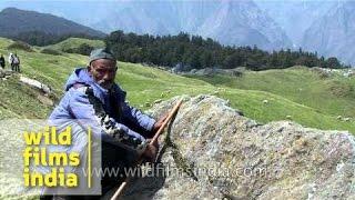 Shepherd watching over his sheep in Uttarakhand