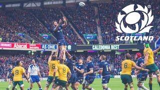 HIGHLIGHTS | Scotland v Australia