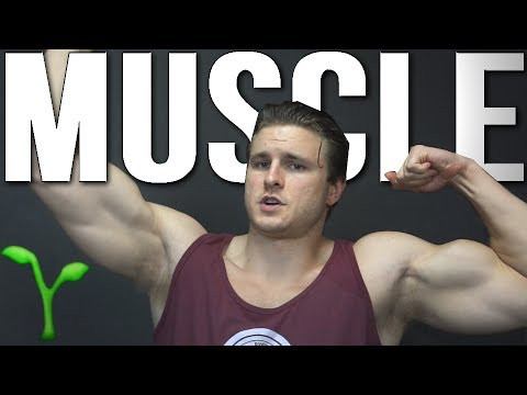 TOP 5 TIPS FOR GAINING VEGAN MUSCLE