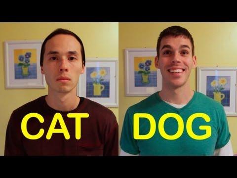 Cat-Friend vs Dog-Friend