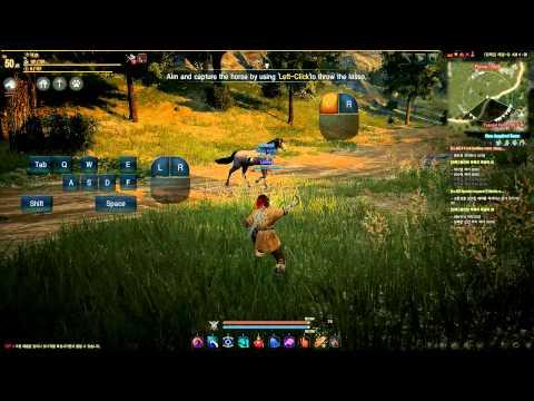BDO: Horses 101 (Taming a Wild Horse)