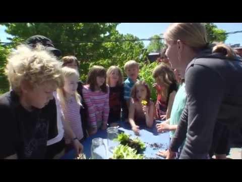 Trillium Public Charter School Rooftop Garden