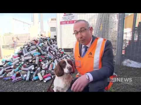 Tommy picks up the scent of Sydney train vandals