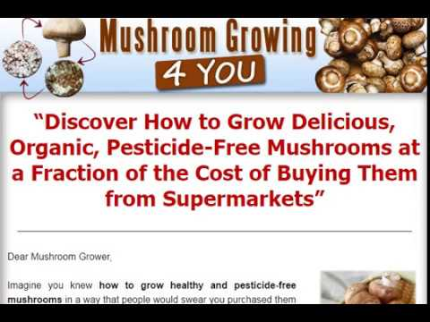 Discover How to Grow Delicious, Organic, Pesticide Free Mushrooms