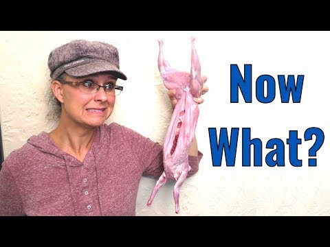 How To Cut Up a Rabbit:  From Farm to Table