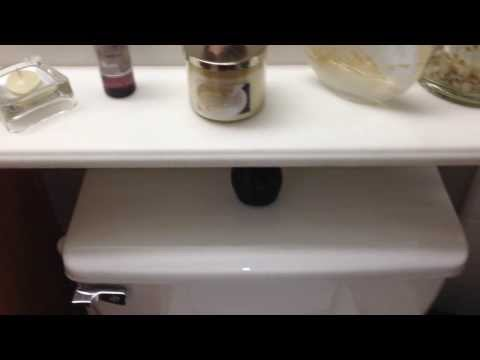 How To Replace Your Toilet Handle Lever On Your Bathroom Toilet