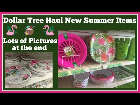 Dollar Tree Haul 🤑New Items 🤑 and Lots of Pictures