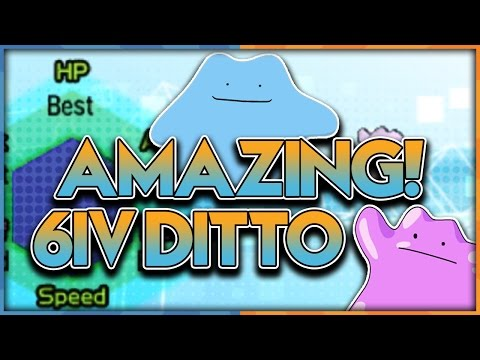 EASY LEGIT BEST DITTOS! How to Get 6IV Perfect Ditto In Pokemon Sun and Moon!
