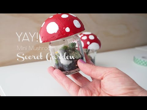 Mini Mushroom Secret Garden