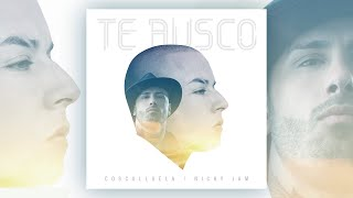 Te Busco - Cosculluela Ft. Nicky Jam [Audio Oficial]