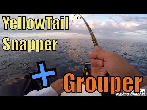 Yellowtail Snapper & Grouper Fishing - Key Largo Florida