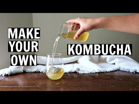 ✽ How to Make Your Own Kombucha At Home ✽ (Cheap, Easy, and Healthy!)