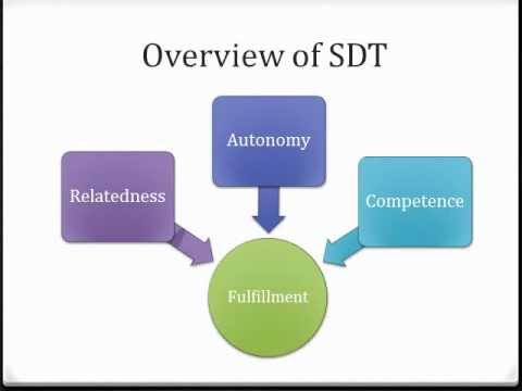 Combining Self Determination Theory and Functional Behavior Analysis