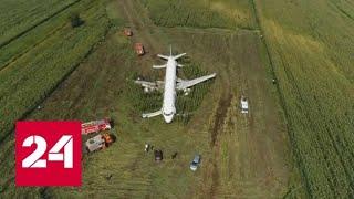 Download Треть пассажиров аварийного самолета отказываются лететь в Симферополь - Россия 24 Video