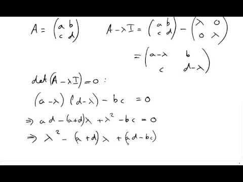 General Solutions of Linear Systems