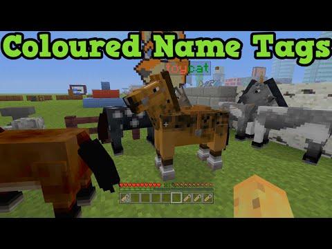 Minecraft Xbox One + PS4 TU19 Glitch: Colored Name Tags