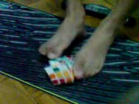 3x3x3 Rubik's Feet Solve 1:20.58