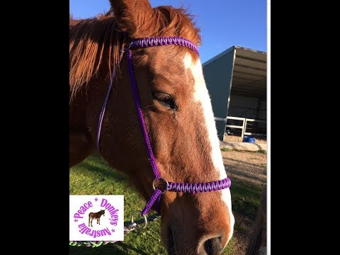 How to make a bitless bridle with paracord