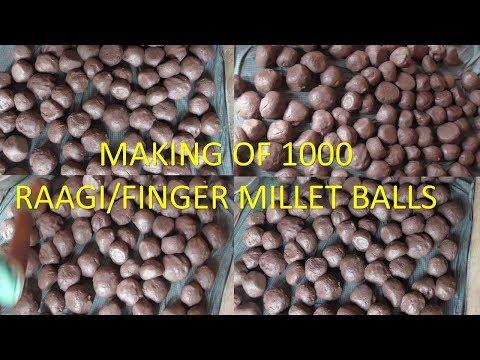 MAKING OF 1000 RAAGI/FINGER MILLET BALLS IN MY VILLAGE