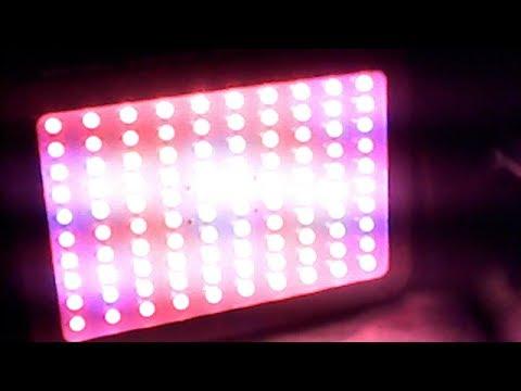 1000W LED WEGOO Grow light from Ebay review...it's only 117 watts !!