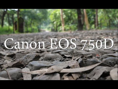 Photography with Canon EOS 750D or T6i | This is What I Clicked in Last 6 months with Canon T6i