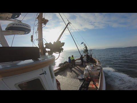 Xxx Mp4 The Laura B Is Monhegan Island 39 S Lifeline 3gp Sex