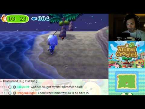 Animal Crossing New Leaf 3DS - How To Catch Sharks 3 in a Row