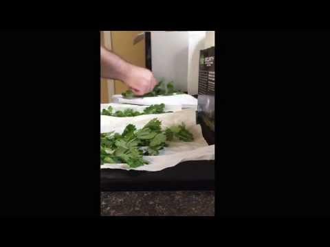 Keep your cilantro fresh in the fridge! 5x longer!!