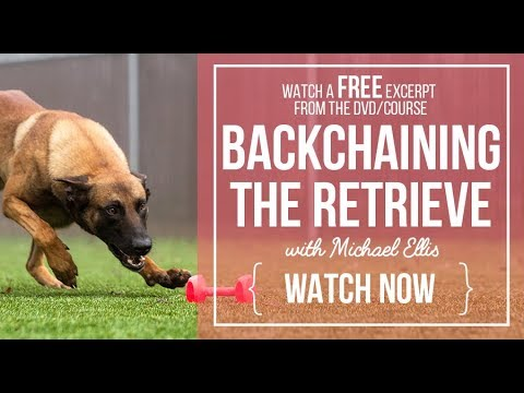 Backchaining the Retrieve with Michael Ellis