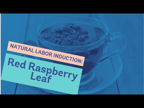 Natural Labor Induction Series: Red Raspberry Leaf