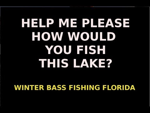 HELP PLEASE-Your Advice Is Needed For Winter Bass Fishing In Florida