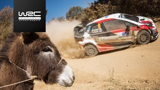 WRC - Rally Guanajuato México 2018: Highlights / Review Clip