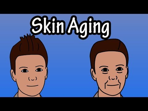 How Does The Skin Age - Skin Aging Process - Why Do We Get Wrinkles