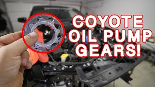 On3 Twin Turbo Install 2015 Mustang GT - Vidly xyz