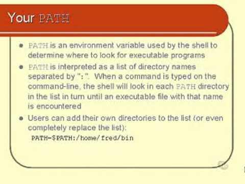 Unix and Linux Basics : Your PATH Part