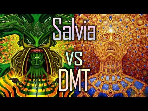 Psychonauten Podcast 009 kleinerkiffer84 - Salvia vs DMT (reup)