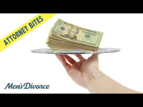 Spousal Support Modification — Attorney Bites